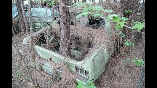 Barn Finds - 56 Classic Mustangs Discovered in Woods in Louisi…