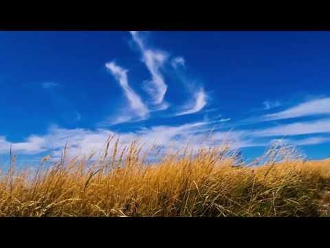 Josh Groban - Brave   ORCHESTRAL COVER