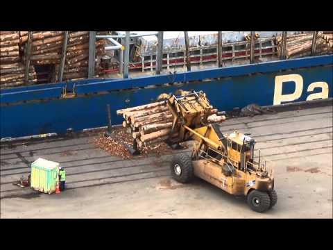 Port Chalmers, Dunedin, Otago, New Zealand, log-loading ships, wharf