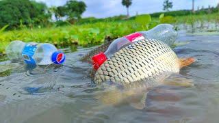 Amazing Bottle Fishing Trap | Hook Fishing By Plastic Bottle | Simple Bottle Hook Fish Trap