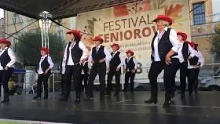 Senior Festival 2018