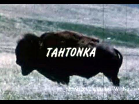 Tahtonka (1973) - Full Length Documentary on the Buffalo