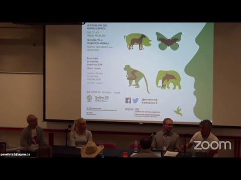 July 6 - 7:30 PM- Workshop 10: Animal Sentience: The Legal Status Of Nonhuman Species