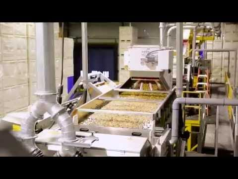 Customer testimonial Andersen & Sons (Walnut sorting with TOMRA's Nimbus BSI)