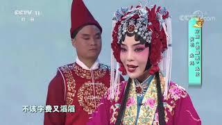 [梨园闯关我挂帅]京剧《锁麟囊》选段 演唱:朱迅| CCTV戏曲