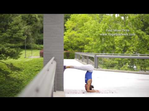 Forearm Balance or Dolphin on the Wall | YogaSlackers 12 Days of Handstands