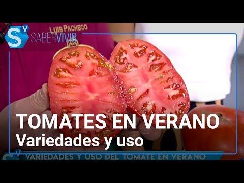 Tomates: variedades y uso en verano | Saber Vivir