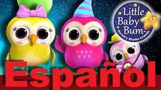Un búho sabio | Canciones infantiles | LittleBabyBum