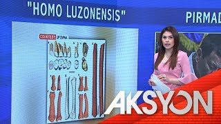 Support for Homo Luzonensis research