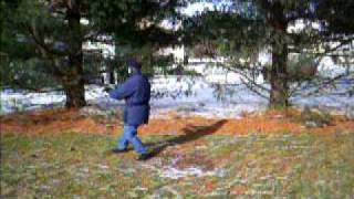 EXERCISES FOR ALL SEASONS: 37 Posture Tai Chi Form