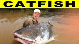 CRAZY CATFISH! - Amazon River Monsters