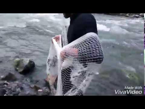 Trout fishing Naran (valley kaghan)