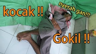 Gambar cover Kocak! Dibalik Video Hey Tayo versi ARAB