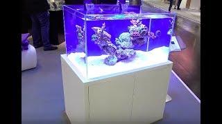 Interzoo 2018: NYOS Opus 300 ein außergewöhnliches Aquarium