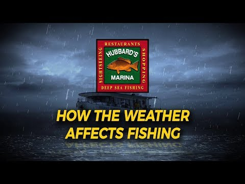 How the Weather affects fishing by Hubbard's Marina | http://www.HubbardsMarina.com