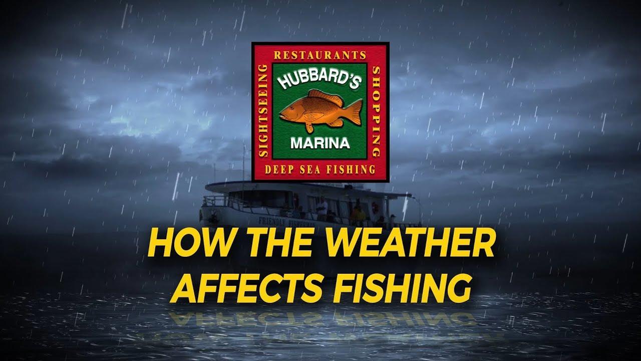 Weather Links | | Hubbard's Marina | Deep Sea Fishing Charters