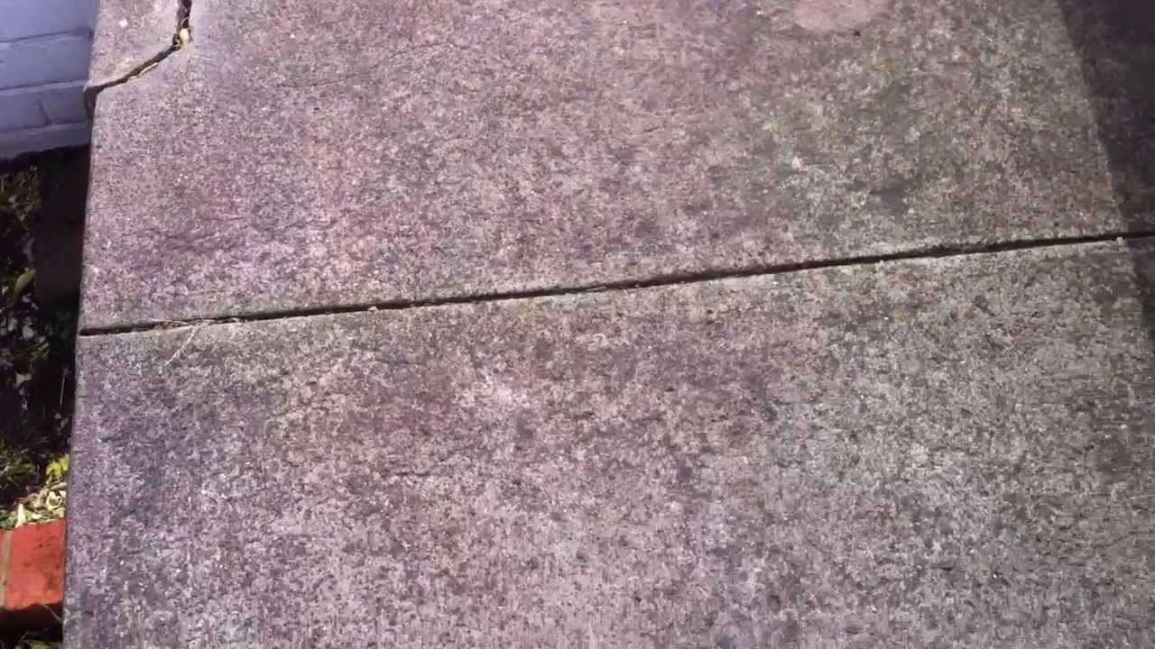 Cleaning a mouldy concrete path youtube for Cleaning concrete paths