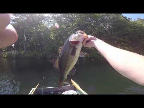 Kensico Reservoir Big Bass
