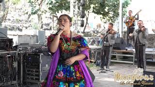 EL ÁRBOL 🌳 | MaryCruz La Reyna de Zamora