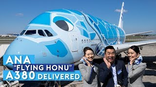 "ANA First A380 ""FLYING HONU"" Delivered!"