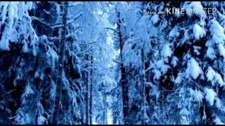 Очень красивый клип Красота зимы!!