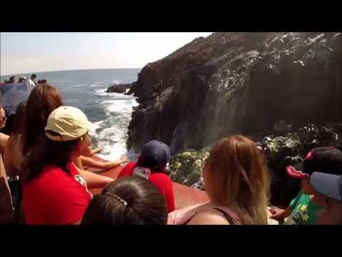 Amazing spectacle of nature in Ensenada Mexico. Maravilloso espectaculo de la naturaleza