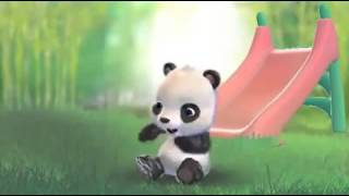 "cute panda funny video ""I Love You Baby"""