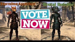 Cast Your Vote for My Next Build - Burning Butcher vs Brutal Butcher