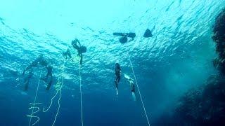 Freediving deep in the Dahab Blue Hole, Red Sea, Egypt. Sharm el Sheikh
