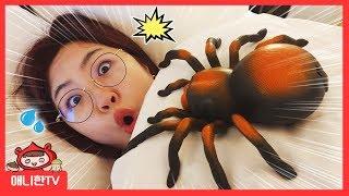 거미 호텔 방탈출! ♥ 숨어 있는 거미를 찾아라 거미 …
