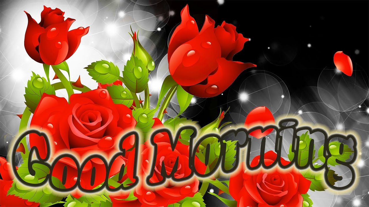Good morning greetings quotes greetings video greetings cards sms youtube premium m4hsunfo