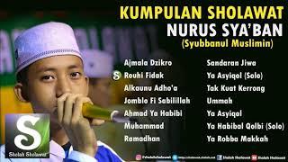 [82.51 MB] Kumpulan Sholawat Nurus Sya'ban (Syubbanul Muslimin) Terbaru