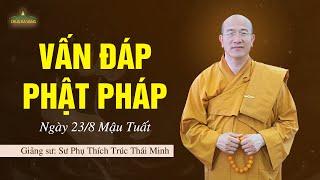 Vấn Đáp Phật Pháp Ngày 23-8 Mậu Tuất | Thầy Thích Trúc Thái Minh