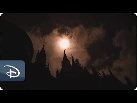 Historic Solar Eclipse Wows Guests at Walt Disney World Resort