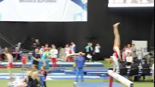 Voronin cup 2017/ Ауди Нелли/ прыжок