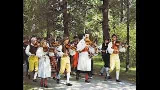 Sandvikens Orkesterförening - Brudföljet