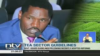 Govt issues guidelines on tea sector guidelines