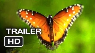 Disneynature: Wings of Life Official US DVD Release Trailer #1 - Meryl Streep Movie HD