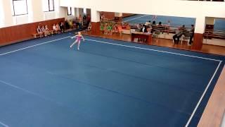 Спортивная гимнастика. Вольные. 1 юношеский разряд.