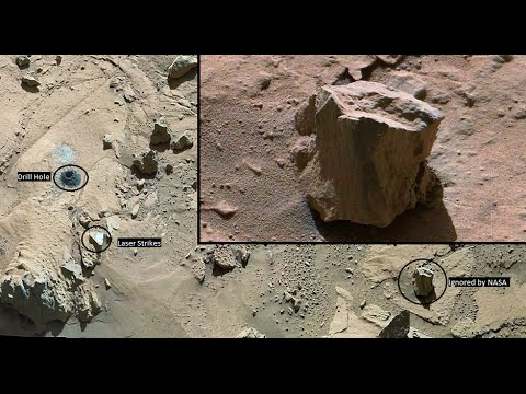 Petrified Wood on Mars ignored by NASA, Curiosity Rover