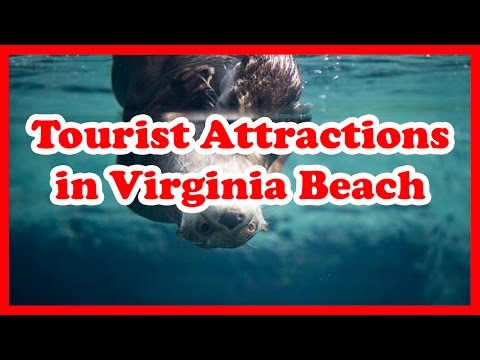 5 Top-Rated Tourist Attractions in Virginia Beach, Virginia | US Travel Guide