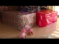 Download Video Baby Annabell and Giggles Wiggles Crawling Baby Doll Got Giant Presents! Baby Doll Pink & Black Cars MP4,  Mp3,  Flv, 3GP & WebM gratis