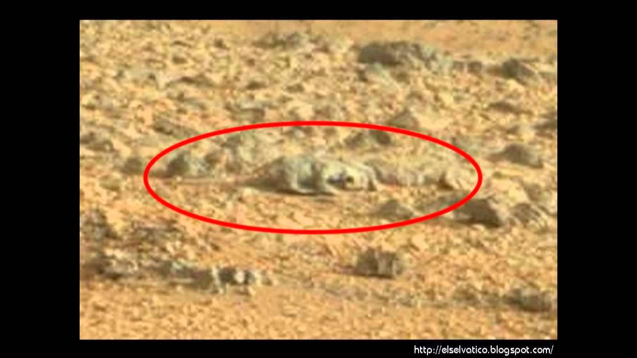 ¿Vida en Marte? ¿Un Lagarto en Marte? (Lizard in Mars ...