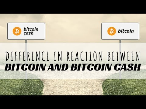 Difference In Reaction Between Bitcoin And Bitcoin Cash