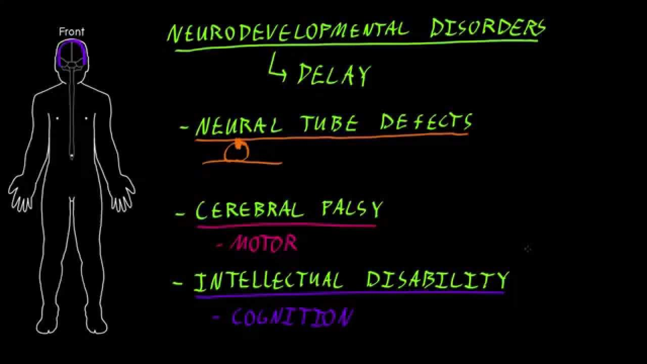 Neurodevelopmental disorders - YouTube