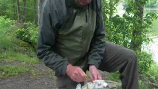 Cook An Egg In An Onion Over An Open Campfire By Outdoor Steve.wmv