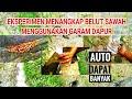 Gambar cover EKSPERIMEN CARA MENANGKAP BELUT SAWAH MENGGUNAKAN GARAM DAPUR | YT CREATOR CHANNEL
