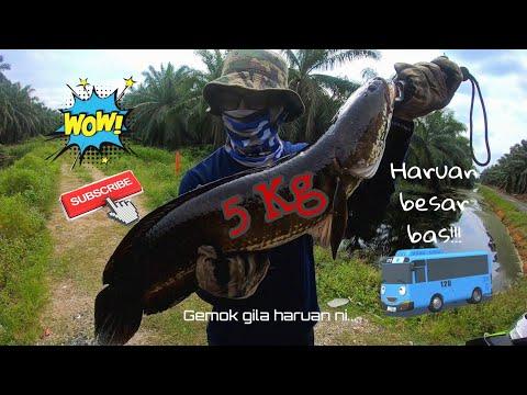 CASTING HARUAN BESAR BAS!!! | RASAKSA KLIA TEWAS
