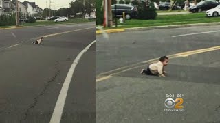 Baby Rescued While Crawling Across Road In New Jersey