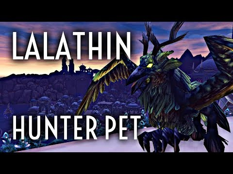 WoW Guide - Lalathin Solo Tame - Hunter Pet